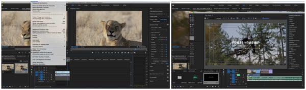 Les bases de Premiere Pro en vidéo