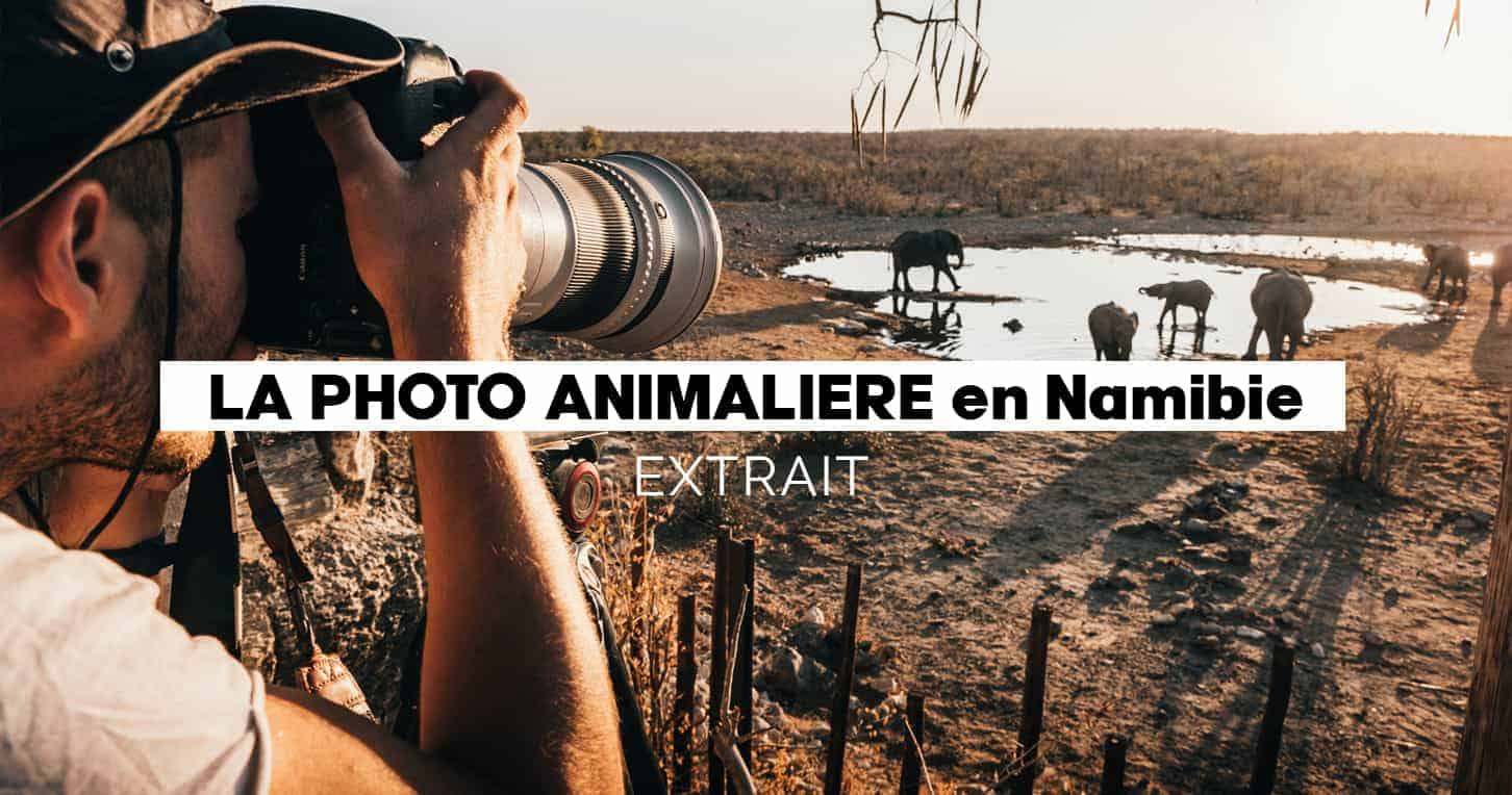 Extraits Module photo & vidéo animalière 1